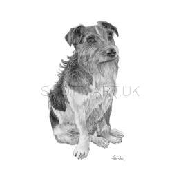 "Long Haired Jack Russell - ""Rodney"" A4 Print"